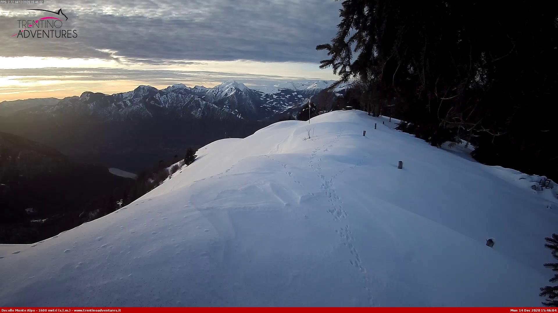 Monte Alpo